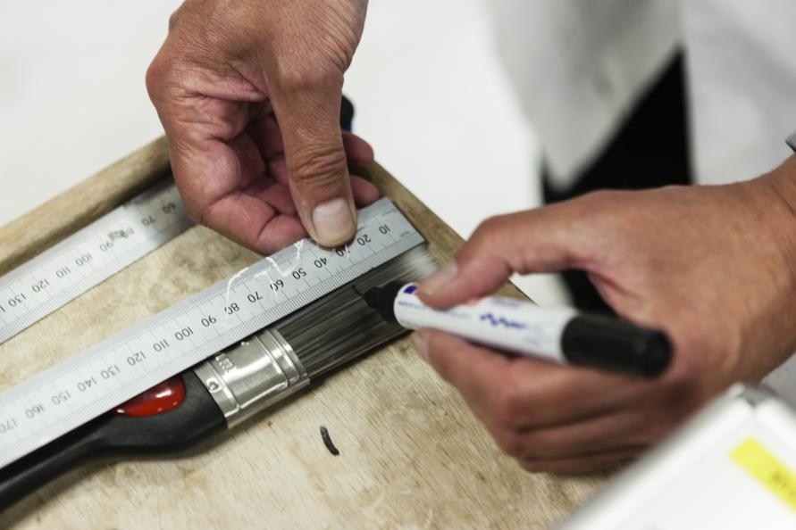Markering av 50 % av borstens längd inför test av färgupptagning. Foto: Frazer Waller