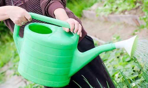 gräsmattegödsel bäst i test