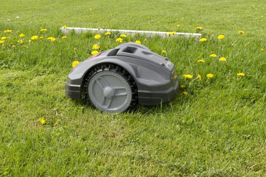 robotgräsklippare på gräsmatta.