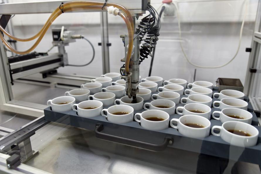 Porslinskoppar får beläggning från intorkat te. Foto: Ulrich Schepp