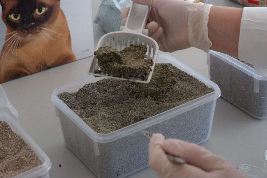 Testfakta testar kattsand och kattströ