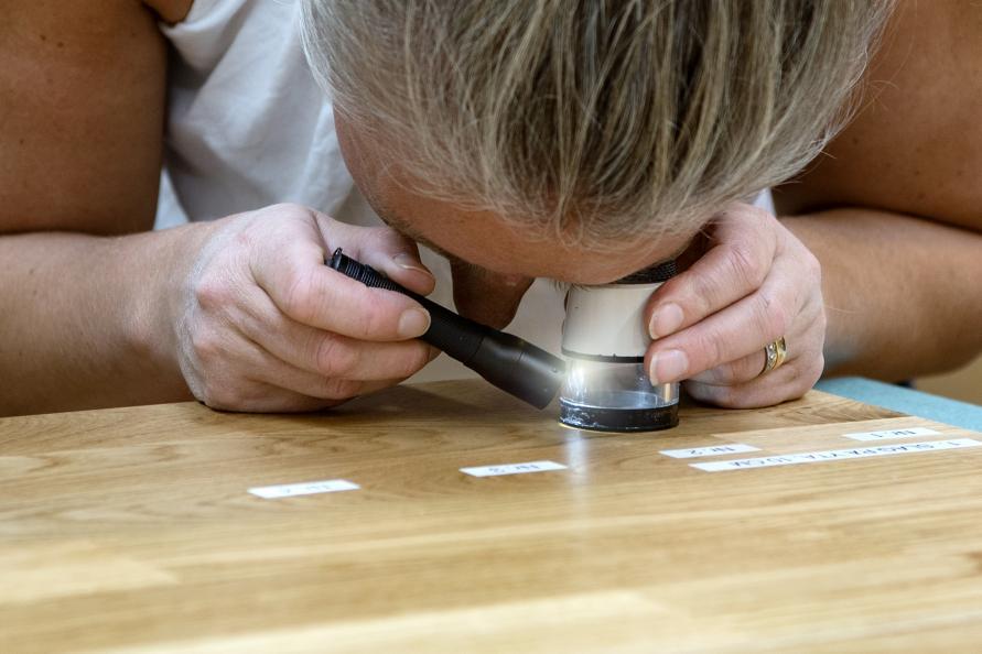 Annika Ahagen på RISE undersöker sprickor i ytlacken efter slagprov. Foto: Anna Sigge