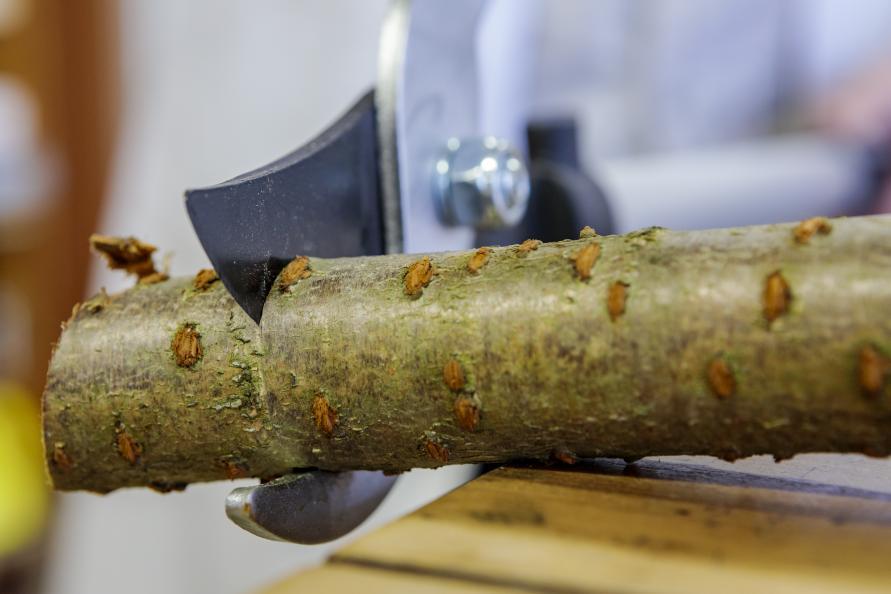 Minst tryckkraft för att skära tjockare pinnar behövdes för testvinnande Fiskars. Foto: Frazer Waller